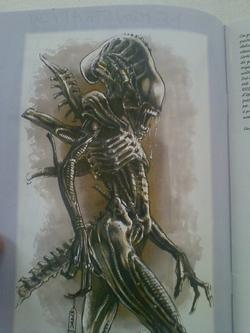 un-alien-par-vincenzo-cucca