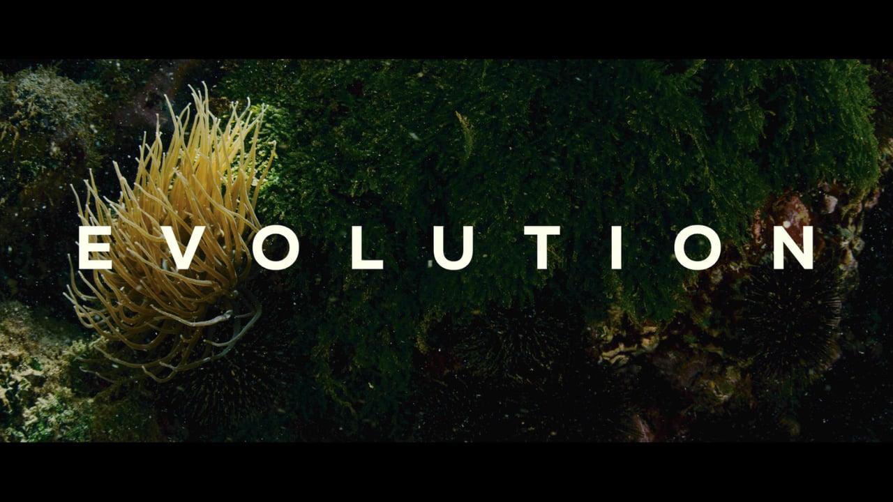 Evolution, de Lucile Hadzihalilovic